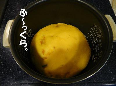 P10208126
